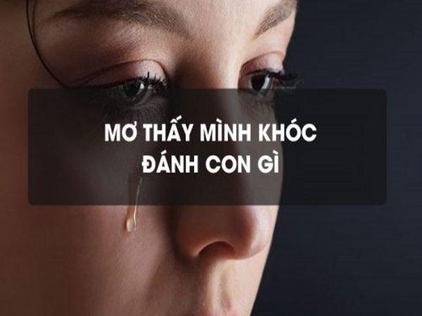 Mơ thấymình khócđánh con gì?